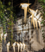 Moooi - Perch Light, ontwerp: Umut Yamac